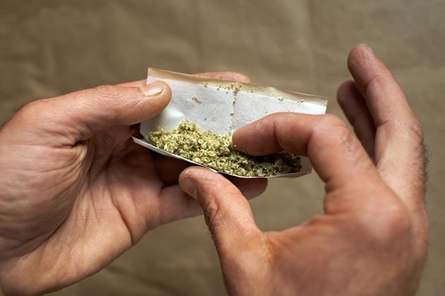 программа доступна можно ли курить грибы приняли решение купить
