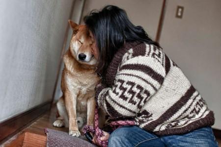 march-4-at-kirikiri-otsuchi-iwate-japan-yuko-ueyama-54-years-old-kiss-picture-id528152706