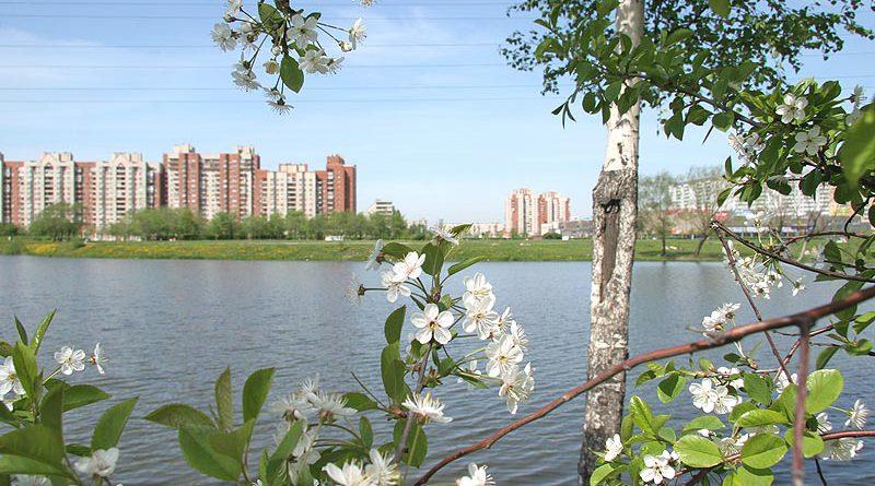 Парк в 2007 году. Фото Дениса Шаляпина www.kupsilla.ru